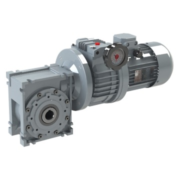 Worm gear reducer with variator